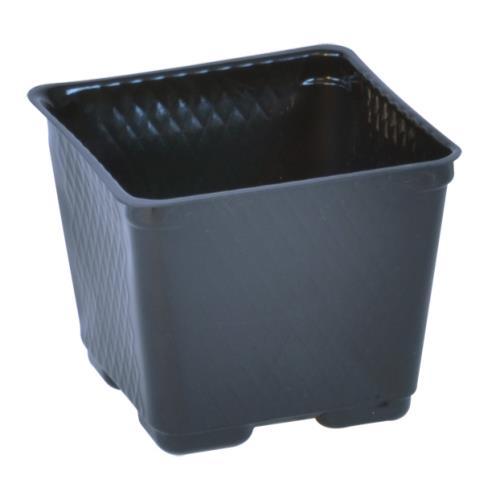 Plastic Pot 4 in Square