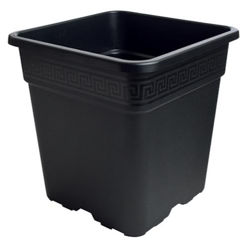 Black Square Pot 2 Gallon