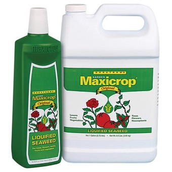 Maxicrop Original Liquid Seaweed 2.5 Gallon
