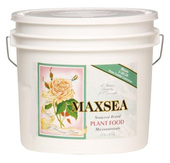 Maxsea Bloom Plant Food 20 lb 3 - 20 - 20