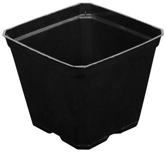 Black Plastic Pot 3.5 in x 3.5 in x 3 in