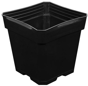 Black Plastic Pot 5.5 in x 5.5 in x 5.75 in