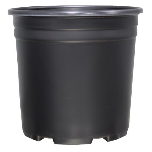 Thermoformed Nursery Pot 2 Gallon 1000/Case