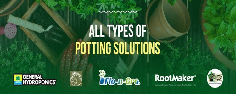 Potting products