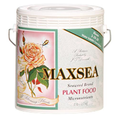 Maxsea Bloom Plant Food 6 lb 3 - 20 - 20