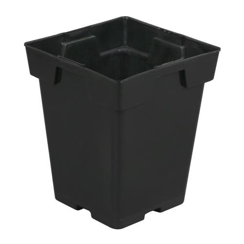 Black Square Pot (Magnum) 6 in x 6 in x 7 in (100/Pack)