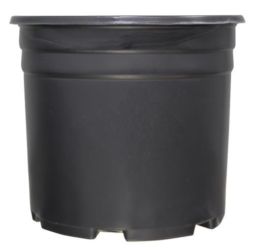 Thermoformed Nursery Pot 3 Gallon(50/Pack)