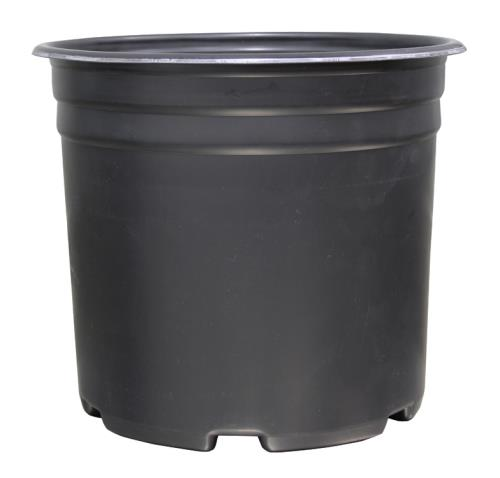 Thermoformed Nursery Pot  5 Gallon(50/Pack)