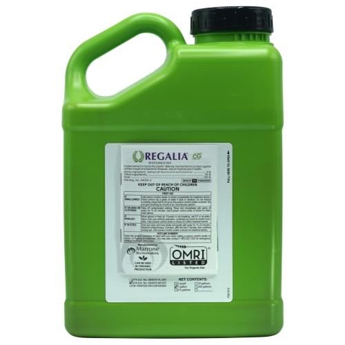 Marrone Bio Innovations Regalia CG Gallon