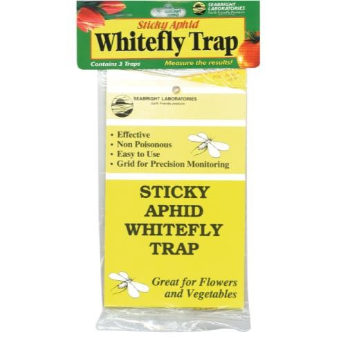 Sticky Whitefly Trap 3/Pack