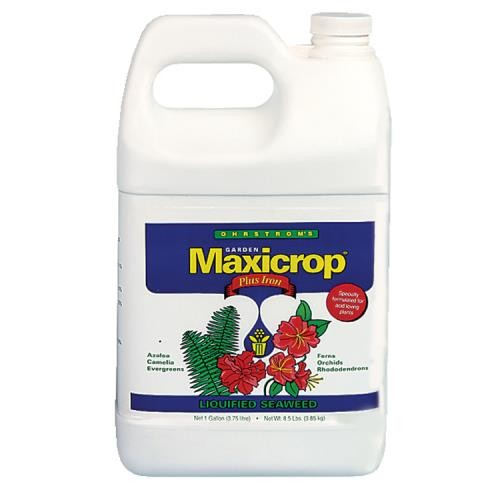 Maxicrop Plus Iron Gallon