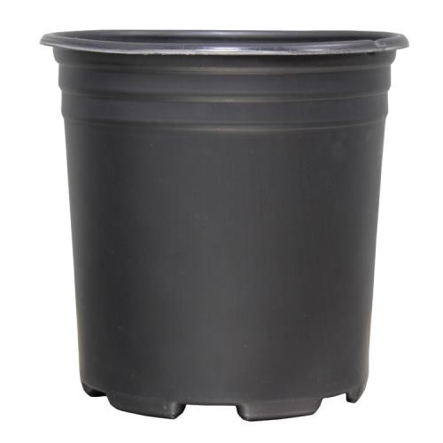 Thermoformed Nursery Pot 1 Gallon(100/Pack)